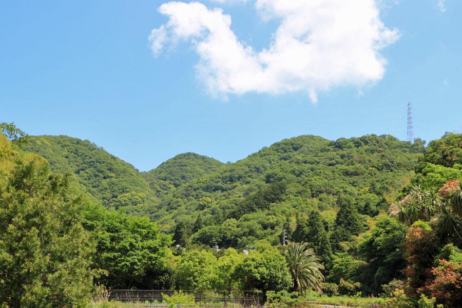 徳島 市八万町 手打ちそば遊山予定地から見える山並み